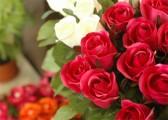 Fleurs couleur